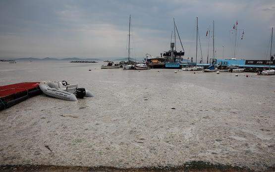 Kadıköy sahilini deniz salyası kapladı