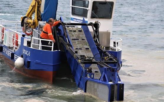 Kabus 3 aydır sürüyor! Kartal sahilleri deniz salyasından temizleniyor